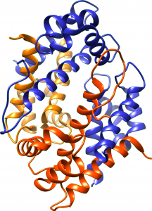 calportectin molecular structure